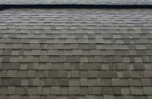 Asphalt Shingle Roof Example