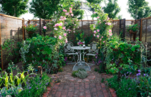 Garden and seating area