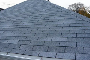 Grey shingle roof